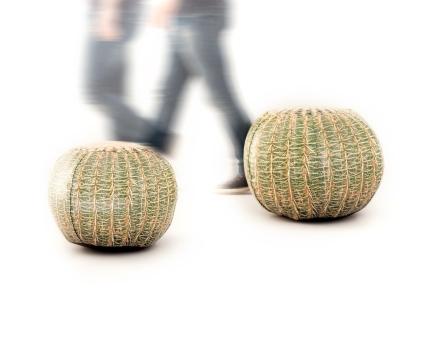 puff-cactus-03
